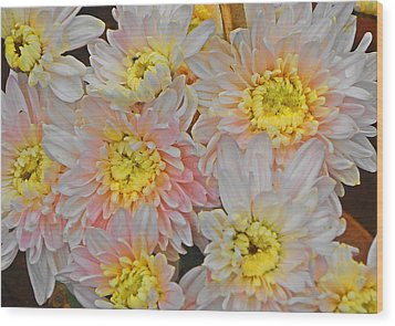 White Yellow Chrysanthemum Flowers Wood Print by Johnson Moya