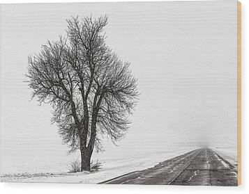 Whiteout Wood Print by Chris Austin