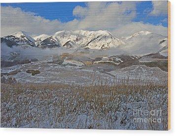 Whiterock Winter Mist Wood Print