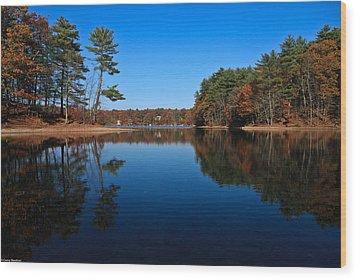 Whites Pond Wood Print by Corey Sheehan