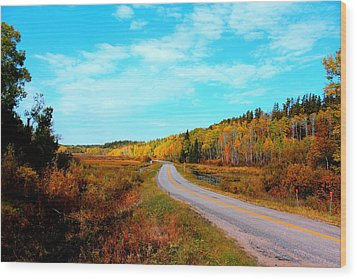 Whiteshell Provincial Park Wood Print by Larry Trupp