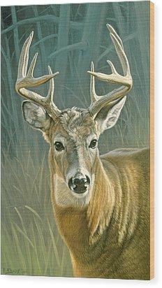 Whitetail Buck Wood Print by Paul Krapf