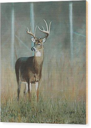 Whitetail Deer Wood Print by Jean Yves Crispo