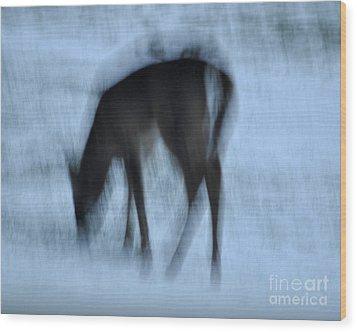 Whitetail Dreams Wood Print by Diane E Berry