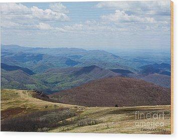 Whitetop Mountain Virginia Wood Print by Laurinda Bowling