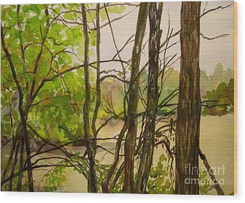 Whitewater Memorial State Park Wood Print by Katrina West