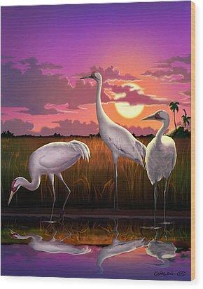 Whooping Cranes Tropical Florida Everglades Sunset Birds Landscape Scene Purple Pink Print Wood Print by Walt Curlee