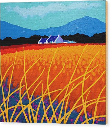Wicklow Hills Wood Print by John  Nolan
