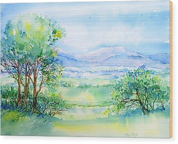Wicklow Landscape In Summer Wood Print by Trudi Doyle