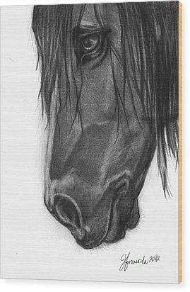Wide Eyed Wanderer Wood Print by J Ferwerda