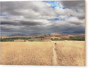 Wood Print featuring the photograph Wide Land by Martina  Rathgens
