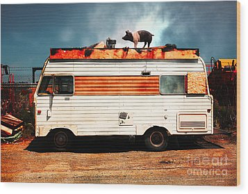 Wilbur The Pig Goes On Vacation 5d22705 Wood Print by Wingsdomain Art and Photography