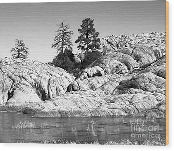Willow Lake Number One Bw Wood Print by Heather Kirk