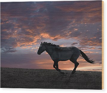 Wild And Free Wood Print by Leland D Howard