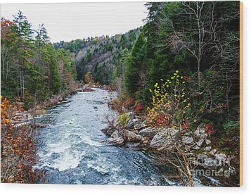 Wild And Scenic Obed River Wood Print