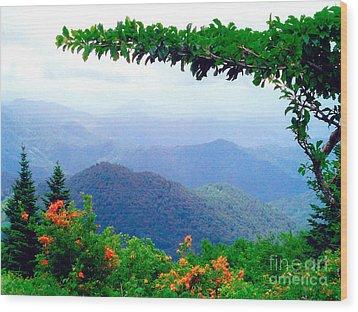 Wild Azalea View Wood Print