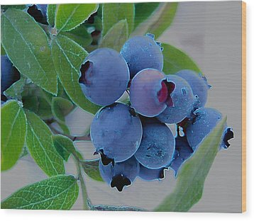 Wild  Blueberries Wood Print by Shirley Sirois