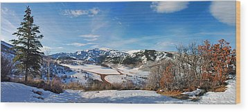 Wood Print featuring the photograph Wild Cat Ranch - Snowmass by Allen Carroll