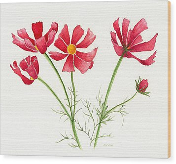 Wood Print featuring the painting Wild Cosmos by Nan Wright