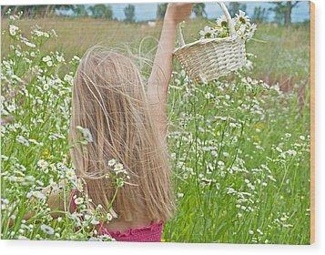 Wild Daisy Field Wood Print by Maria Dryfhout