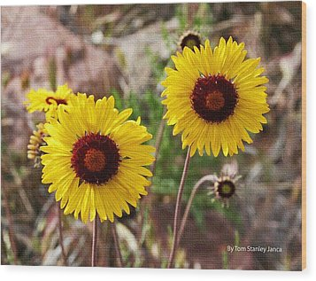 Wood Print featuring the photograph Wild Flowers Above The Rim by Tom Janca
