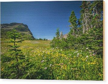 Wild Flowers Glacier National Paintedpark   Wood Print by Rich Franco
