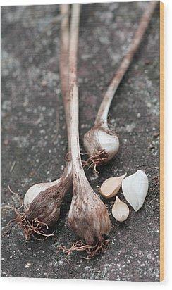Wild Garlic Wood Print by Melinda Fawver