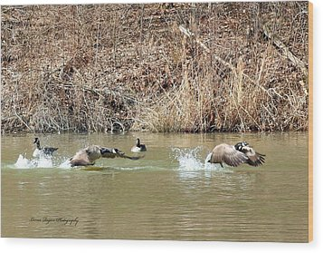 Wood Print featuring the digital art Wild Goose Chase by Lorna Rogers Photography