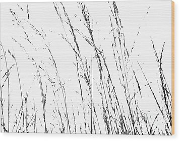 Wild Grasses Abstract Wood Print by Natalie Kinnear