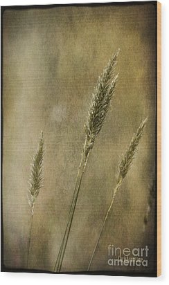 Wood Print featuring the photograph Wild Grasses by Chris Armytage