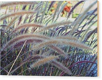 Wild Grasses In Autumn Wood Print