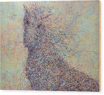 Wild Horse Wood Print by James W Johnson
