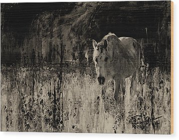 Wild Horse Wood Print by Jim Vance