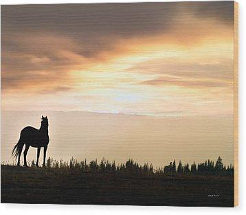 Wild Horse Sunset Wood Print by Leland D Howard