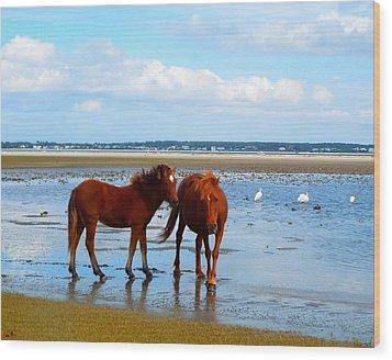 Wild Horses And Ibis 2 Wood Print