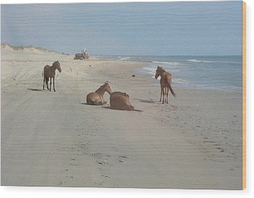 Wild Horses On The Beach Wood Print