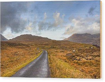 Wild Landscape Of Connemara Ireland Wood Print by Mark Tisdale