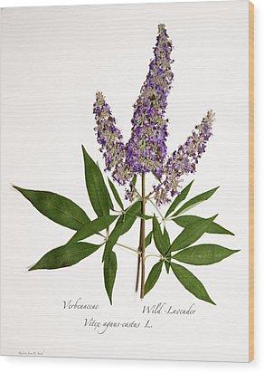 Wild-lavender 1 Wood Print