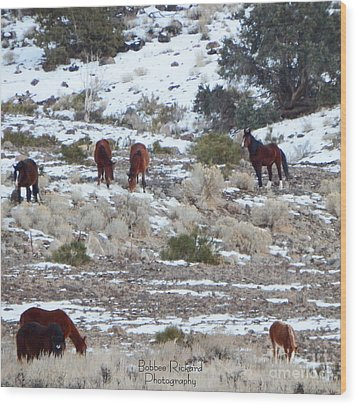 Wild Mustangs In A Nevada Winter Wood Print