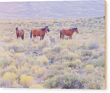 Wild Mustangs Wood Print by Marilyn Diaz