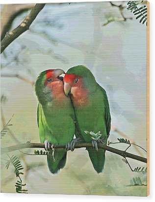 Wild Peach Face Love Bird Whispers Wood Print by Tom Janca