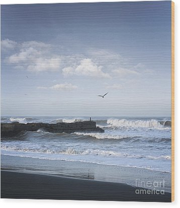 Wild Seascape With Old Jetty And Seagulls Overhead  Wood Print by Colin and Linda McKie