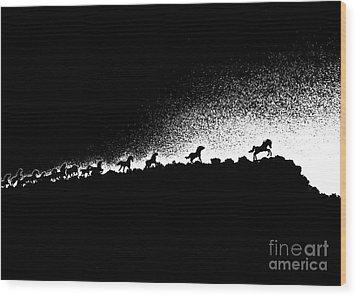 Wild Stallions Silhouette Wood Print