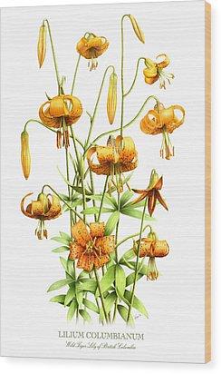 Wild Tiger Lilies Wood Print
