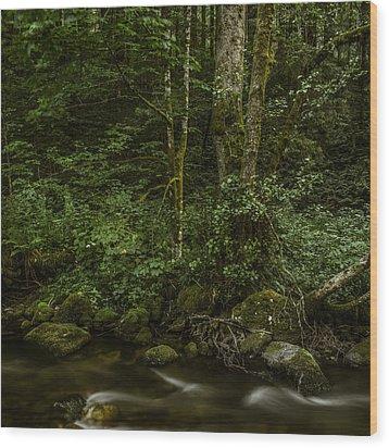 Wilde Gutach 3 Wood Print