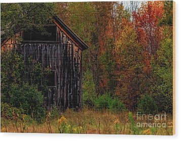 Wilderness Barn Wood Print by Brenda Giasson