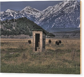Wilderness Outhouse Wood Print by CR  Courson
