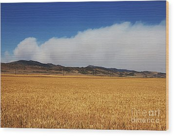Wildfire Wood Print by Jon Burch Photography