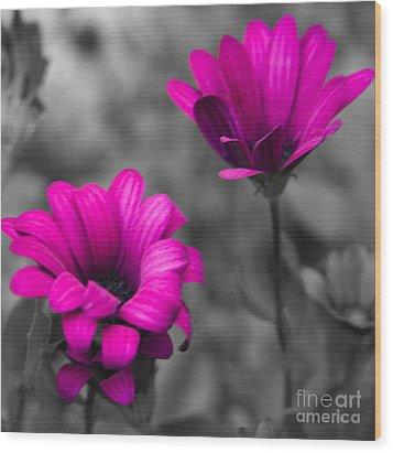 Wildflower 2 Wood Print