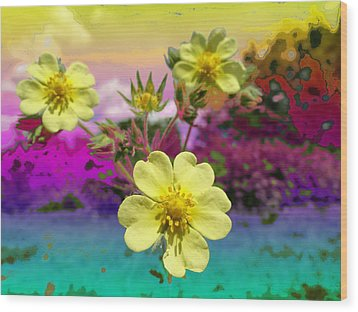 Wildflower Abstract Wood Print